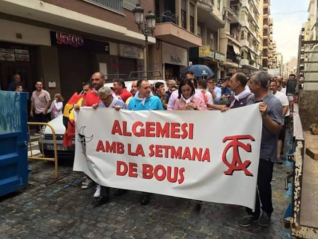 L'alcaldessa socialista d'Algemesí Marta Trenzano i l'exalcalde del PP, Vicent Ramon García encapçalant manifestació a favor dels bous, 2015.