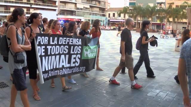 Manifestació antitaurina, Algemesí.